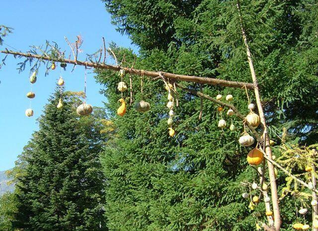 Festa della zucca paesaggi e immagini luoghi e punti for Noleggio della cabina del parco cittadino